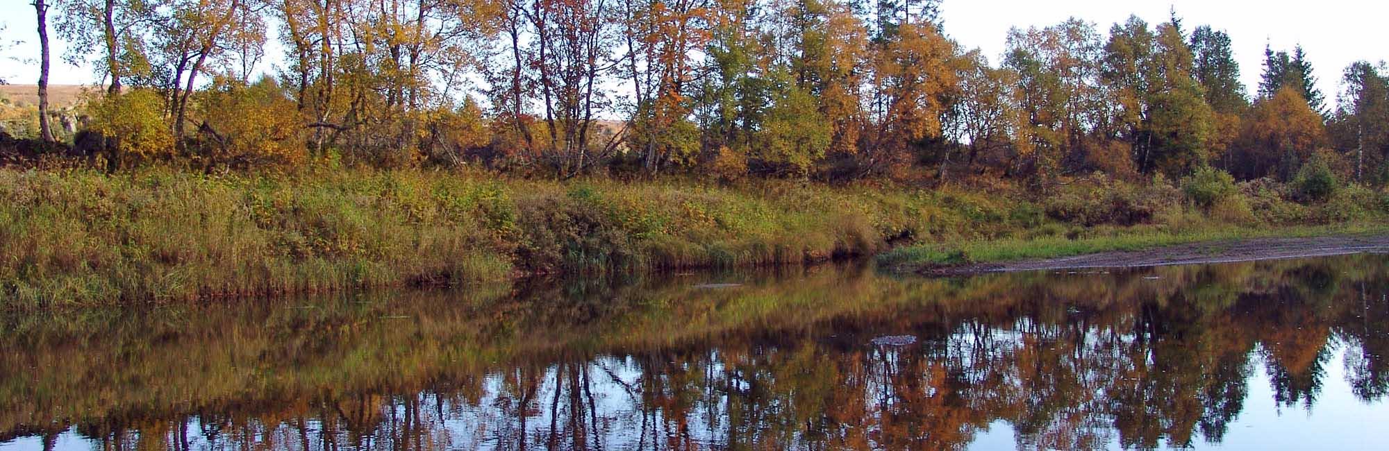 Lonin Gård & Camping - elv