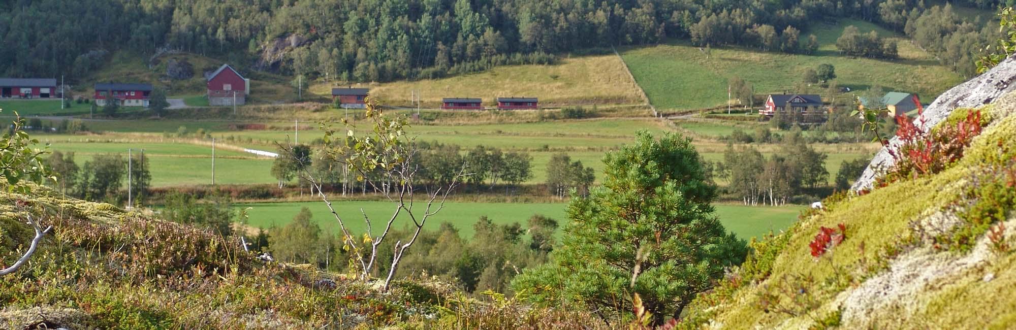 Lonin Gård & Camping - fjell